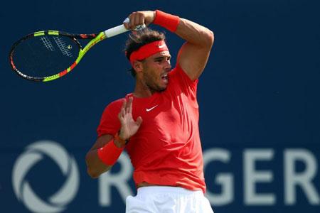 纳达尔因伤弃ATP年终总决赛德约科维奇笃定获年终第一